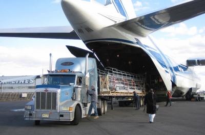 Image result for delhi air cargo